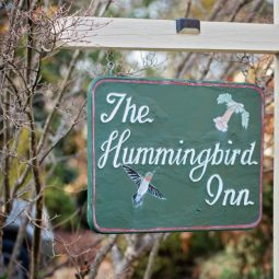 Elopement at The Hummingbird Inn | Ward Photography | Shay+Michael