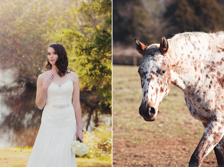 Wolf Trap Farm Bridal Session